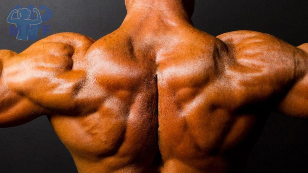 Man with defined shoulders from doing shoulder workouts for mass