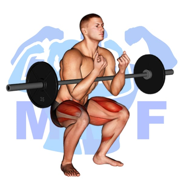 Ultimate Guide For The Barbell Squats Form Benefits And Tips