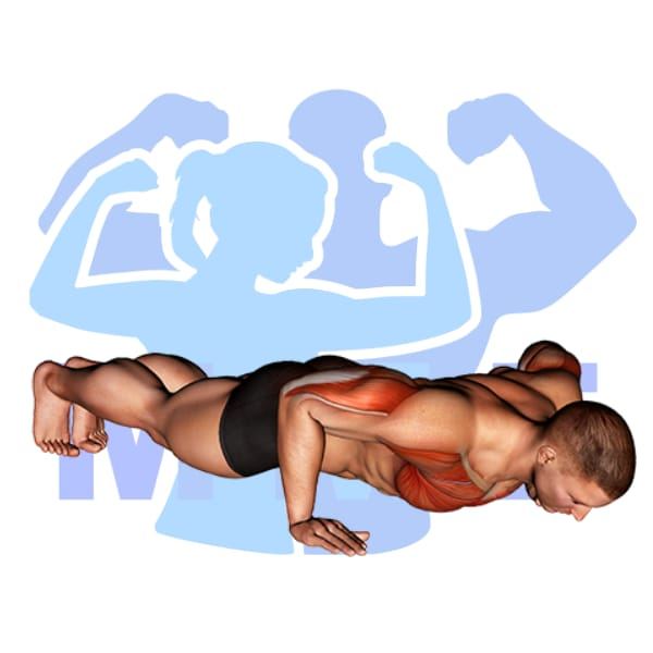 Man performing push-ups with MuscleMagFitness logo background.