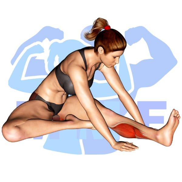 Woman performing modified hurdler stretch with MuscleMagFitness logo background.
