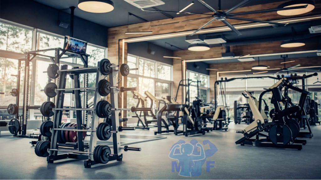 The Best Way of Choosing a Gym, beautiful gym with free weights and cardio equipment.