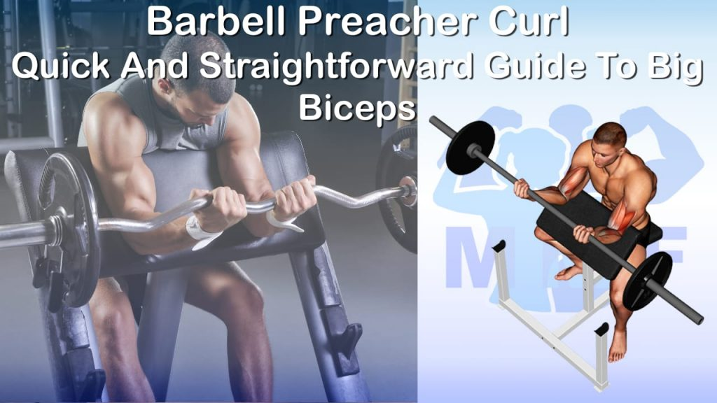 Barbell Preacher Curl - Quick And Straightforward Guide To Big Biceps