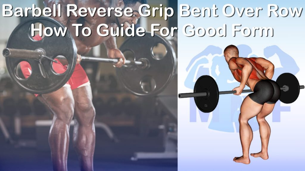 Barbell Reverse Grip Bent Over Row - How To Guide For Good Form