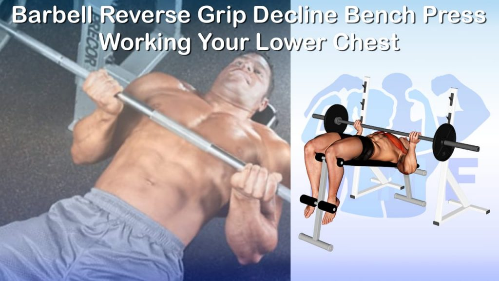 Barbell Reverse Grip Decline Bench Press - Working Your Lower Chest