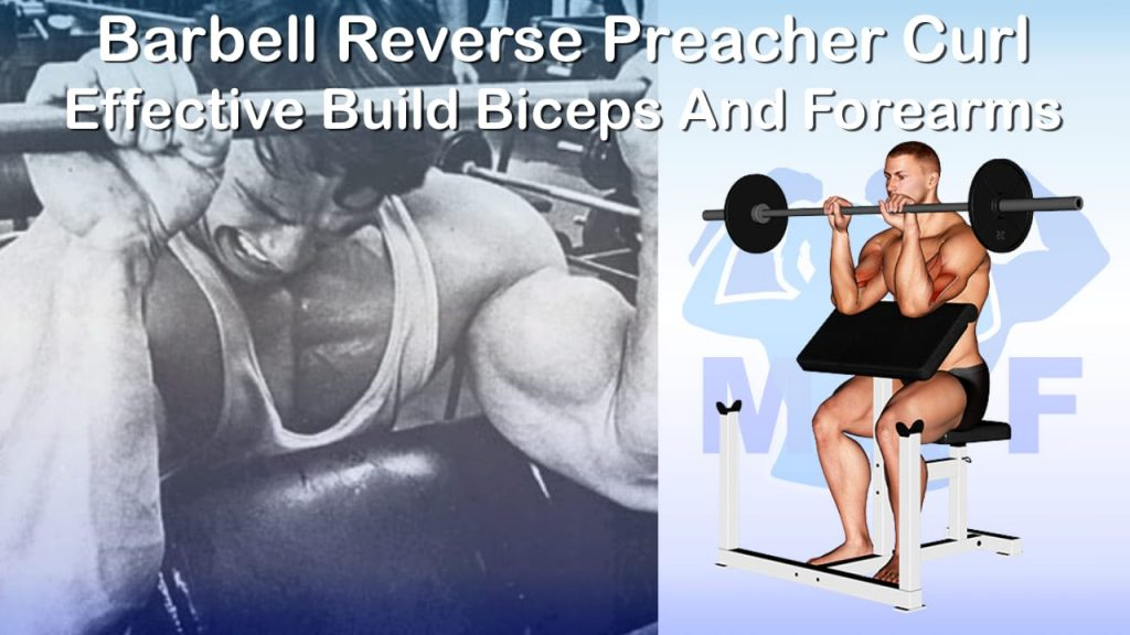 Barbell Reverse Preacher Curl - Effective Build Biceps And Forearms