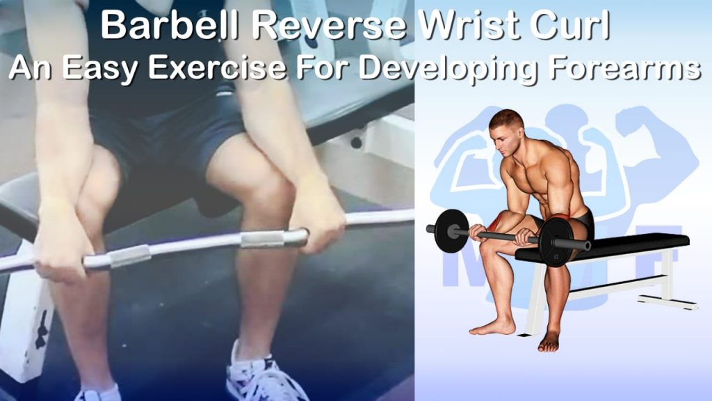 Barbell Reverse Wrist Curl - An Easy Exercise For Developing Forearms
