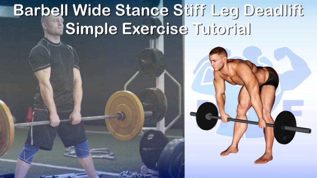 Barbell Wide Stance Stiff Leg Deadlift - Simple Exercise Tutorial