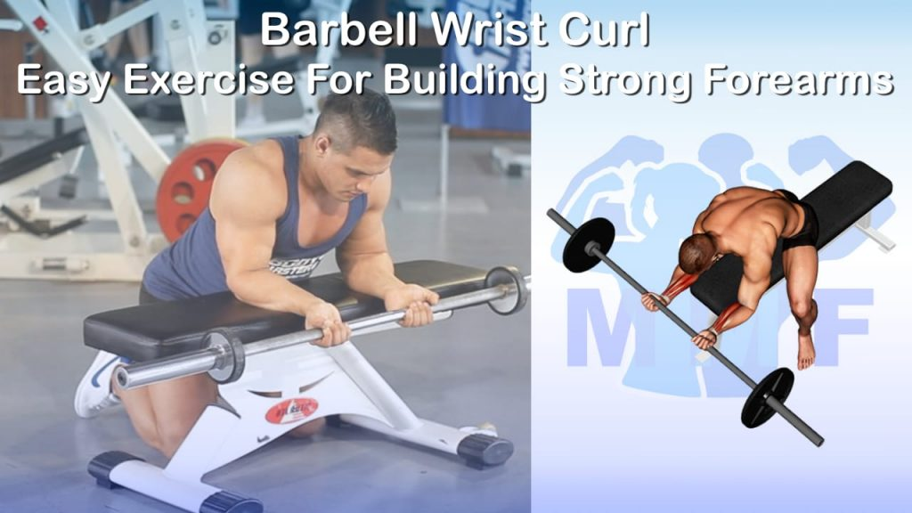 Barbell Wrist Curl - Easy Exercise For Building Strong Forearms