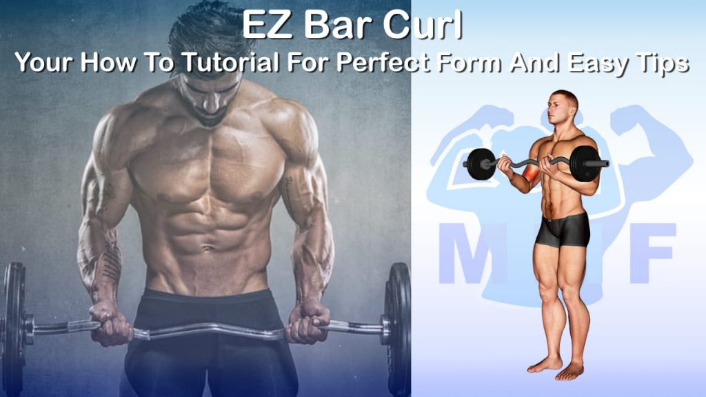 EZ Bar Curl - Your How To Tutorial For Perfect Form And Easy Tips