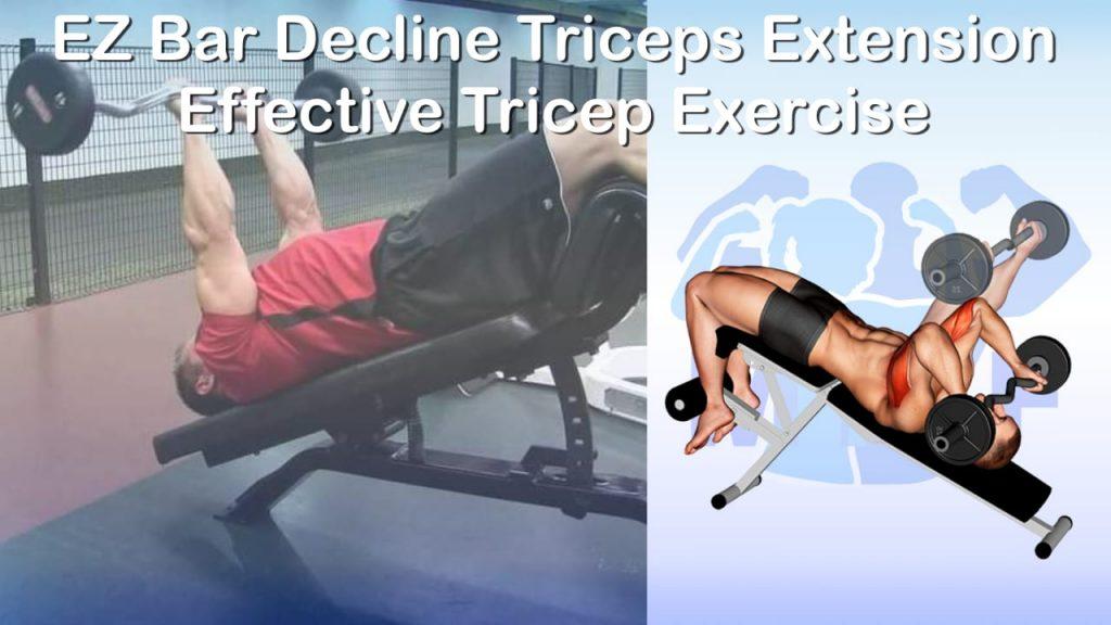 EZ Bar Decline Triceps Extension - Effective Tricep Exercise