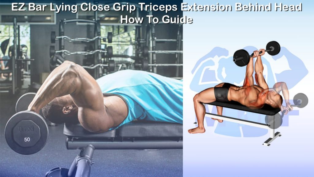 EZ Bar Lying Close Grip Triceps Extension Behind Head - How To Guide