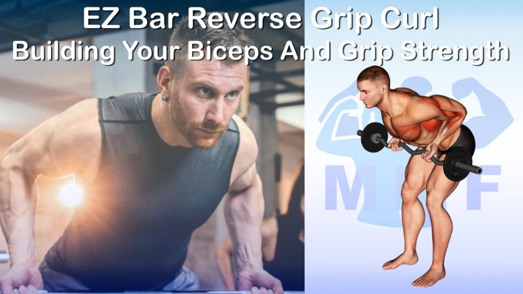EZ Bar Reverse Grip Bent Over Row - Your Quick And Easy Guide